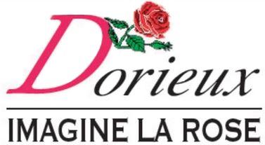 logo dorieux